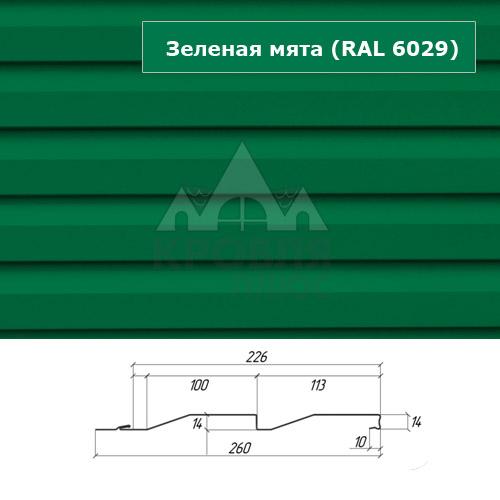 Зелёная мята ral 6029