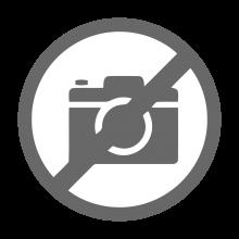 Банга Пурпурный RAL 4006 ш. 1.19 (1.10) м